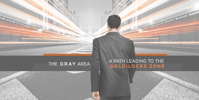The Gray Area, A Path Leading to the Goldilocks Zone