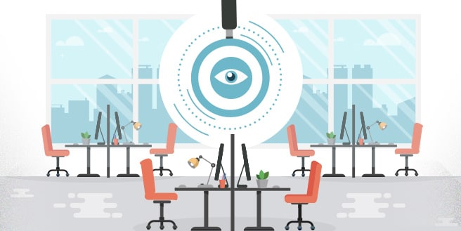 Incorporating Privacy Strategies in Open Plan Offices