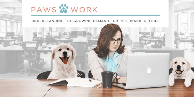 Understanding The Growing Demand For Pets Inside Offices